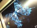 これ可愛い。手のレントゲンと蝶