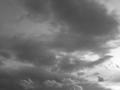 白黒の感覚に慣れる為に、白黒効果付けて撮るようになりました。画質