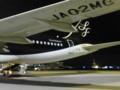 帰りの飛行機もポチョムキン機長だった。