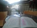 稽古場に行く1時間前、 パセーラのテラスで台本を読む。やはり屋外