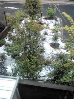 外を見たら雪が積もっていたのでビックリ。