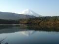 朝の西湖と逆さ富士