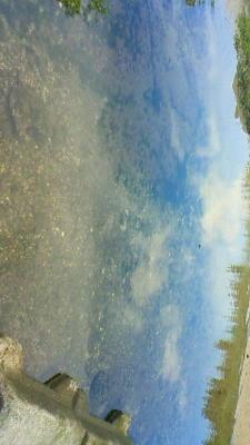 ♪水たまり 映ってる 水中の青空…♪これは海だけれど(笑)画像、ちゃ
