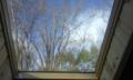 おはようございます。信州原村は晴れ13.8℃、天窓から見える木々