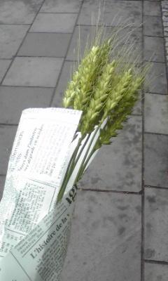 JR吉塚駅。地域産品の販売で添田町から来たお母さんが麦の穂を売って