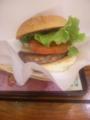 今日のお昼は、久々にフレッシュネスバーガー。うまい!