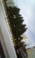 いい天気!!!