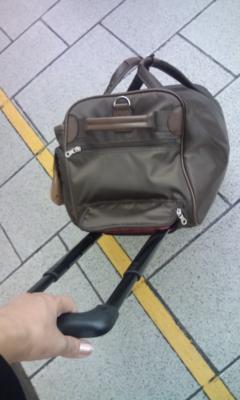 イトーヨーカドーで3ウェイのソフトキャリーバッグ買った。スゴくい