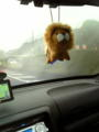 おはよう 雨でも眠くてもお腹減っても通勤っ!