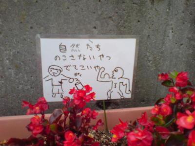 新潟大学前駅前にて