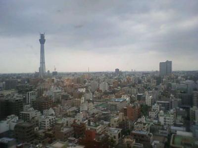 ホテルからの眺め スカイツリーが見える