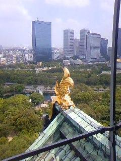 大阪城天守閣展望台なう。