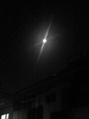 ♪ 今宵月はどこを照らすの