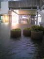 ぷち洪水なう