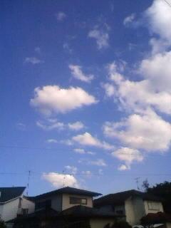 このひらけた空ともおわかれです