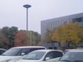 @ram_x_sekirara7 これや、豊田行った時「紅葉だ〜♪」って写メったけど思