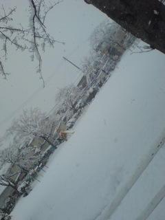 年賀状出しに来たなうー近所の公園も真っ白です
