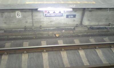【閲覧注意】東横渋谷駅ホーム下に生首なう