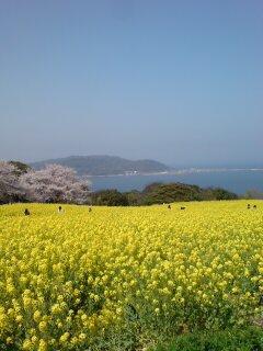 能古島にやってきました。
