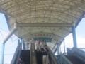 中京競馬場なう