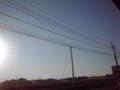 久しぶりに朝の太陽とご対面ー\(^o^)/最近は薄曇りばかりだったし。