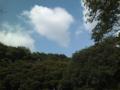 小金井公園の空。
