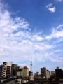 青空の東京スカイツリー!蒸し暑く無く過ごしやすいですね。