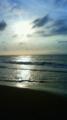 思いがけず海へ。楽しすぎて膝まで入ってうかれた。