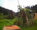 「最後の教室」の朝礼台とジャングルジム