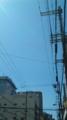 [Photo]お出かけ開始。今日の大阪市内は快晴!