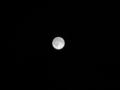 満月です〜。これで月見でもしてください。