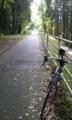 どっかのランキングで日本一のサイクリングロードになった耶馬溪メイ