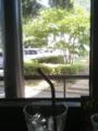 天気が良いので喫茶店でのんびり。