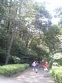 今日の小金井公園。蝉時雨がうるさいけど、心なしか8月よりも音 が小