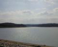 (sun)ドライブ。狭山湖歩いた 太陽でキラキラしてた!