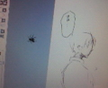 島国まんが描いてたら蜘蛛寄ってきた