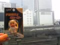 思わず買ってしまったキユーピーさん(600円)。バックは東京駅で