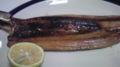 [kommm] 今日も秋刀魚