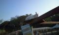 ちょっとした動物園もあります。旭山動物園を彷彿とさせる自由な感じ