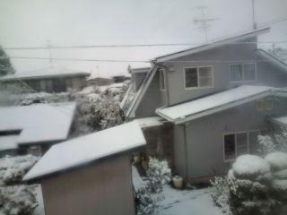 おはようございます(^-^)今日は文化の日☆起きたら外には雪が!数日で