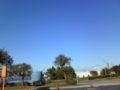 ホントに気持ちいい天気@若州海浜公園