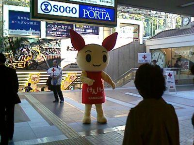 横浜駅東口でけんけつちゃん発見!