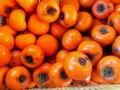 カラスが執拗に狙ってたから、柿を全部収穫。あいつら隣の家の渋柿に