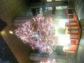 ジーサイド前、もうクリスマス!なう。
