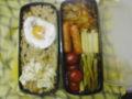 本日のお弁当。カレー、ソーセージ、目玉焼き、高菜飯、あと野菜。