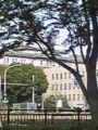 外掘通りから見える愛知県庁。  昼ご飯…。どーしよっかな。