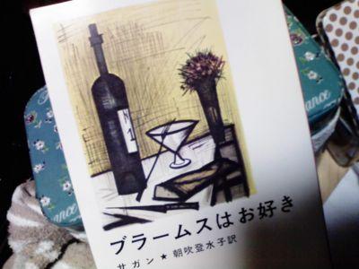 本屋にコレ取りに行くまで待てなくて、ミシマの金閣寺読み始めた。