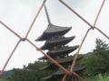 興福寺なう