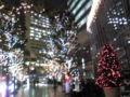 かえる…寒いよ〜今日クリスマスツリー届いた^^