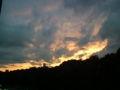 神宮の森は感動の夕焼けなう。